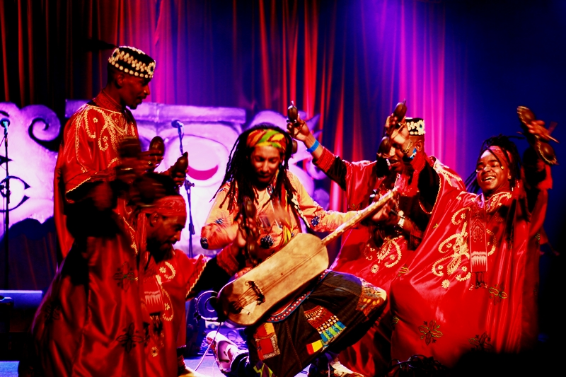 mehdi nassouli perform rainforest world music festival